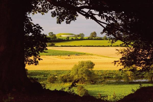 Drive around Ireland's Ancient East