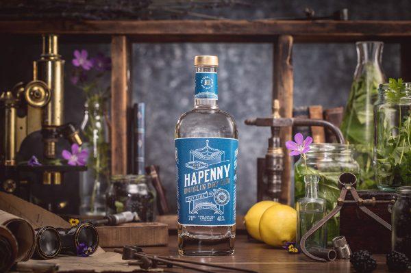 Gin experience a Dublino